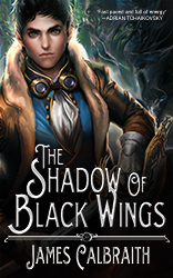Cover image of The Shadow of Black Wings by James Calbraith