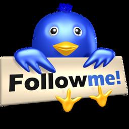 Twitter Bird With
