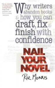 Cover of nail your novel