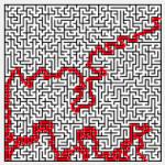 Complex Path