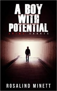 Cover of A Boy with Potential