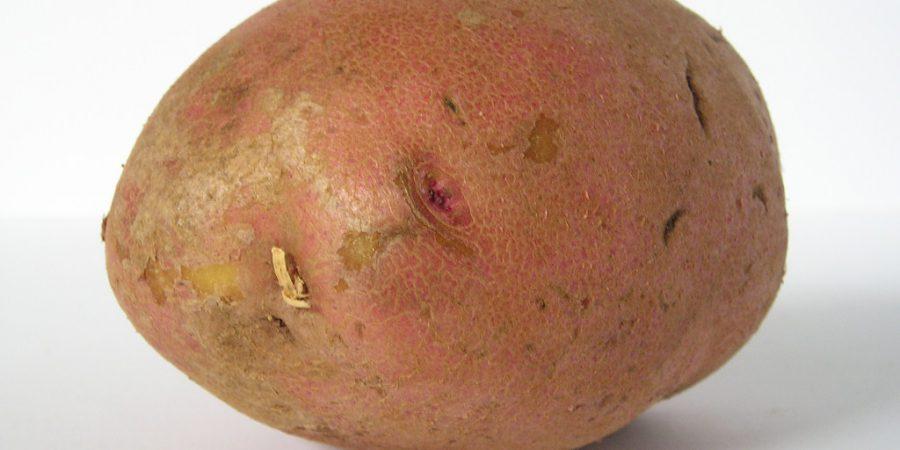 Photo Of A Potato