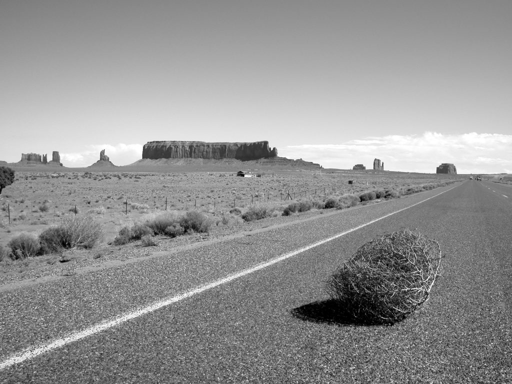 picture of tumbleweed blowing down a deserted road