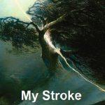 my-stroke-of-inspiration-cover-396x591-72dpi-web