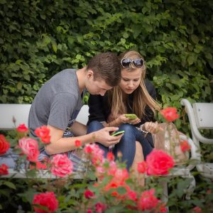 Young couple reading their cellphones on a park bench
