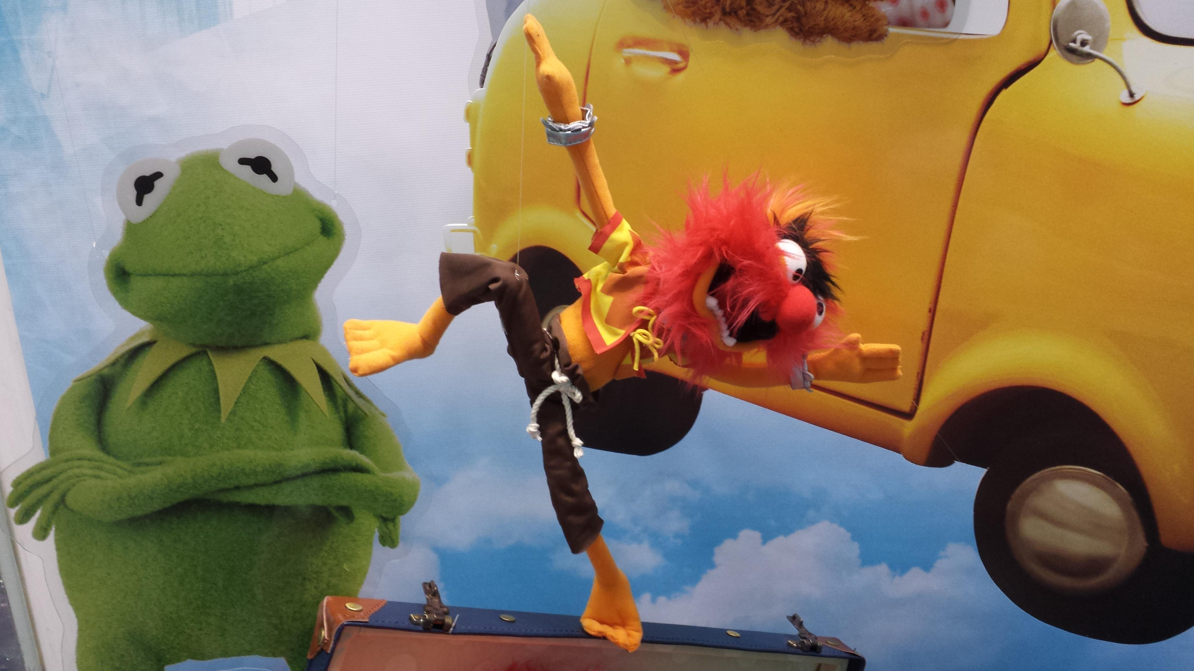 Photo Of Two Muppet Puppets