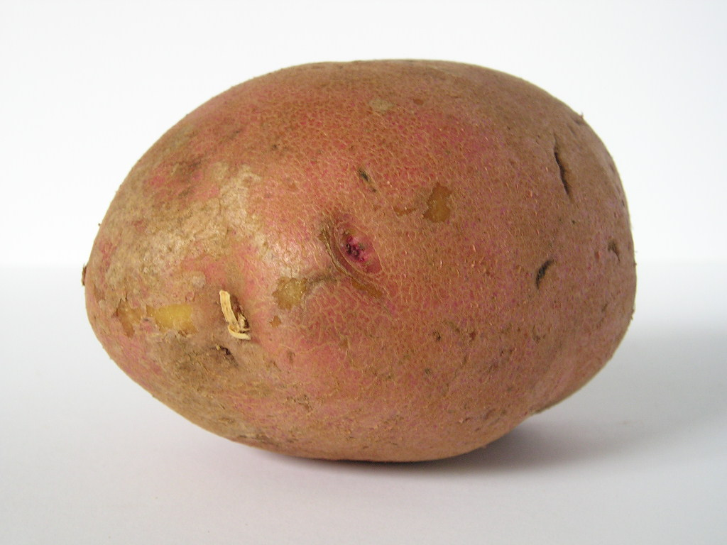 Photo Of A Potato
