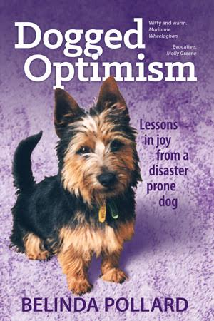 Cover Of Dogged Optimism