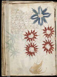 voynich_manuscript_32