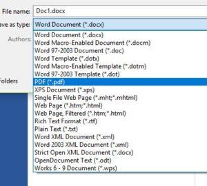 screenshot of pdf options