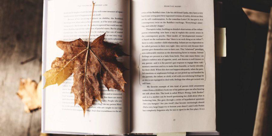 Self-publishing News: .epub And You