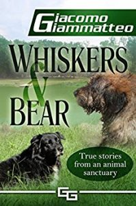 cover of Whiskers and Bear
