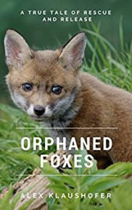 cover of Orphaned Foxes by Alex Klaushofre
