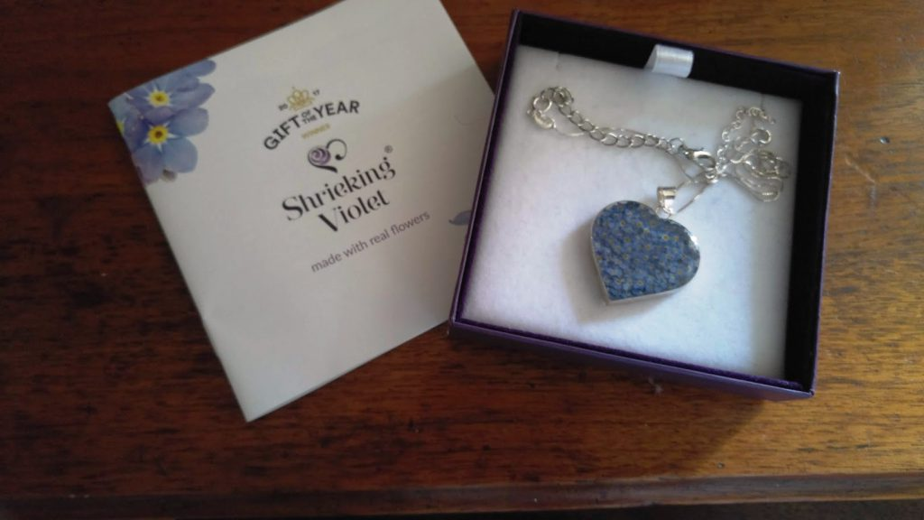 photo of heart-shaped necklace filled with real forget-me-not flowers