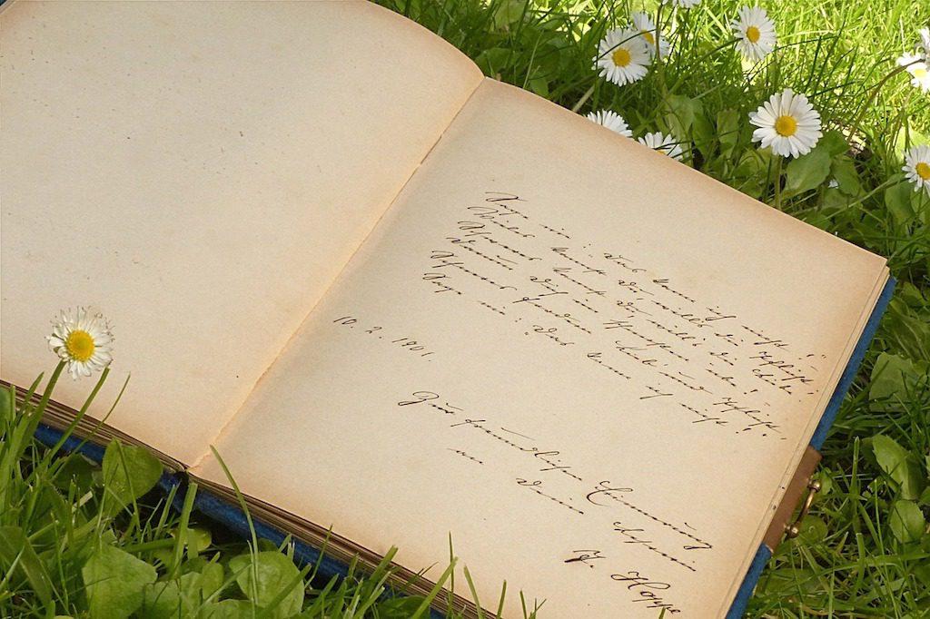 Photo of handwritten poetry journal on grass