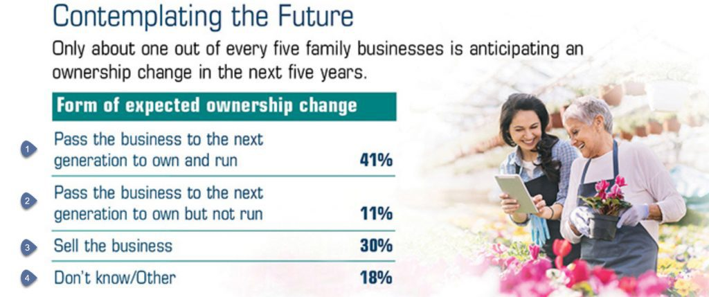graphic of options in estate planning for a small business