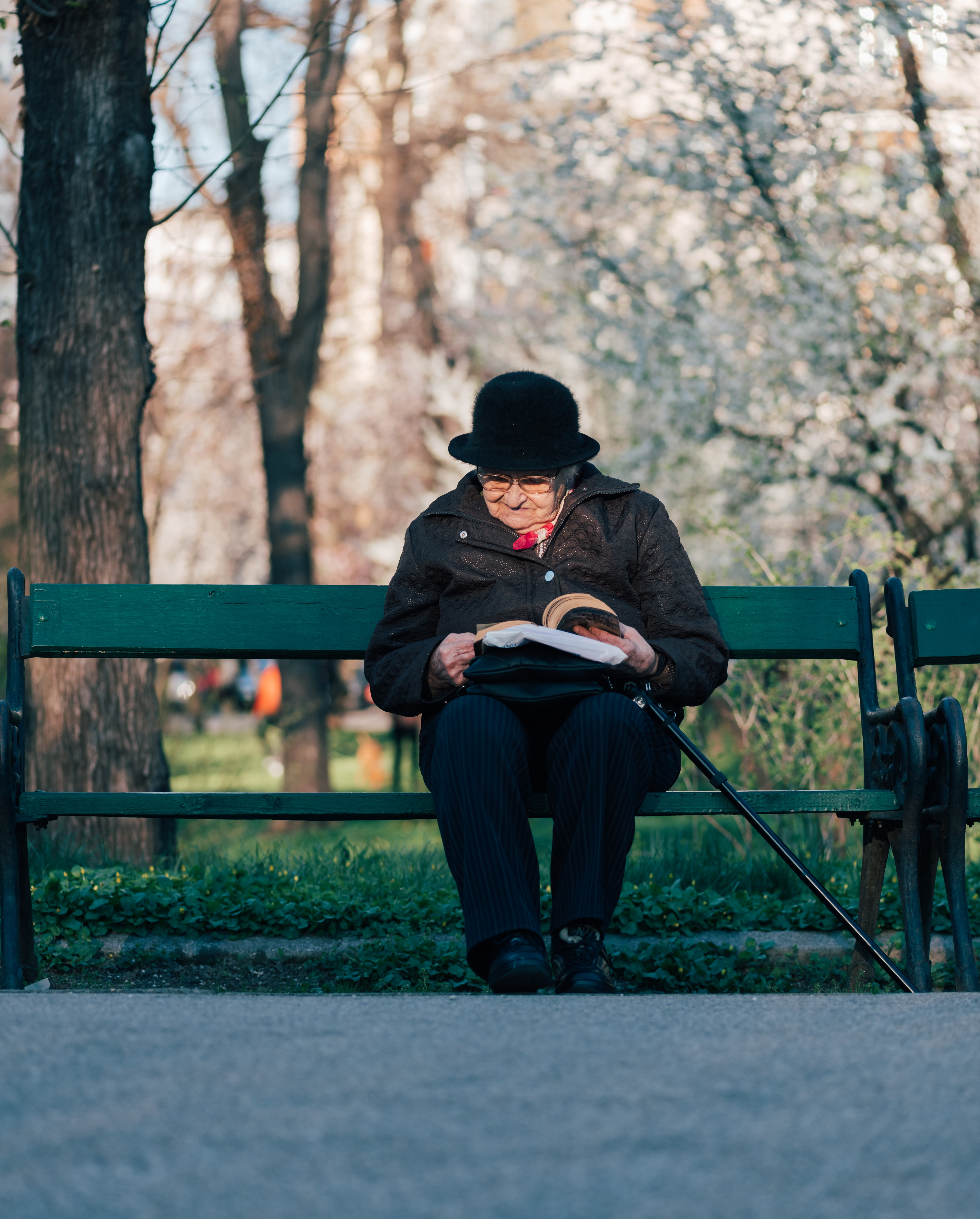 Photo Of Old Lady Reading In The Park